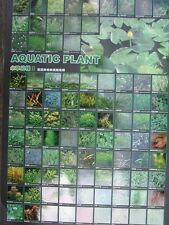 Azoo Freshwater Aquatic Plant Ii (Water Lily Pond Plant) Poster