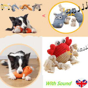Dog Tough Strong Chew Knot Teddy Toy Pet Puppy Healthy Teeth Bear Cotton Rope