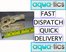 Crocodile Alligator Cranio Decorazione resina acquario Pesci Terrario Ornamento 8 cm