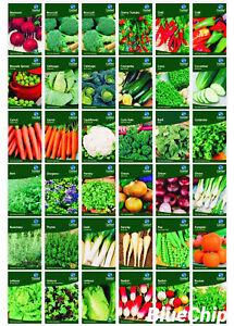 Garden Treasures Fresh Herbs Vegetable Fruit Seeds Grow Your Own Indoor Outdoor