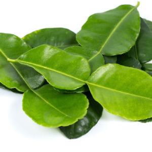 Sri Lankan Natural Organic 100% Dried Lemon leaves 20 Herbal Tea Better Medicine