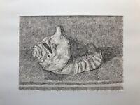 Muschel Zeichnung Feder Karl Gustav Hansen *1925 Riesen Meeresschnecke 50 x 64