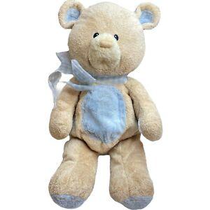 Baby Gund Nursery Blue Bear Tan Teddy Plush Toy Lovey Stitched Belly Paws FLAWS