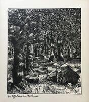 Herthasee Wald Totenköpfe Hermann Hirzel 1864-1939 Ostsee Rügen Lithografie
