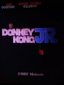 Donkey Kong Jr NO JAMMA ARCADE PCB WITH JAMMA CONVERTER