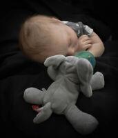 EVER A PUMPKIN PATCH BABIES REBORN BY LYNN KATSARIS/BB