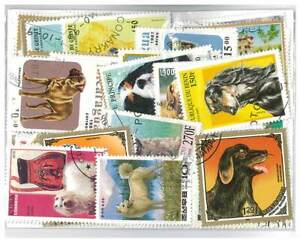 Dogs - 100 Different Stamps Mixed in Bag Used