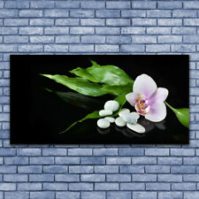 Glasbilder Wandbild Druck auf Glas 140x70 Blume Steine Blätter Pflanzen