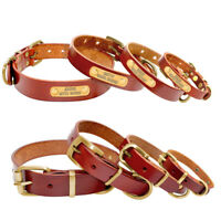 Brown Personalised Dog Collar Leather Pet Name ID Engraved Free Pitbull XS S M L