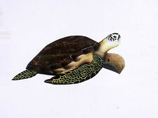 Sea Turtle Carved painted from Florida Palm Tree Frond sculptured wall art