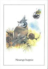 FDC 2759 - Oiseau Buzin sur gravure format A4 !