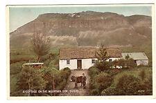 A Cottage On The Mountain Side - Sligo Photo Postcard c1920s