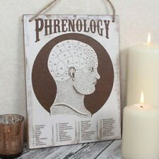 Phrenology Wall Plaque - Wood Sign Hanging Cabinet of Curiosities Vintage Style