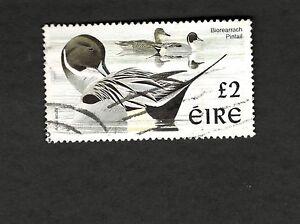 1998 Ireland SC #1111 PINTAIL BIRD Θ used stamp