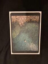 Apple IPad Pro 10.5 Inch Box Only - 256GB Wi-Fi + Cellular Space Grey - FREE P&P