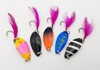 5x Forellenblinker Japan Blinker Trout Spoon Barsch Döbel B75