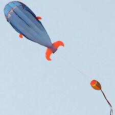 3D Dolphin Kinderdrachen Drachen Flugdrachen Kinder Spielzeug Kite draußen