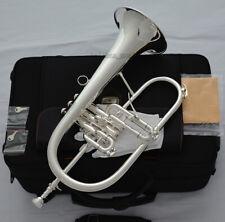 Professional Silver Flugelhorn High Grade Flugel Monel luxury Case