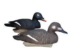Diver duck decoys White Winged Scoter 16 Pack
