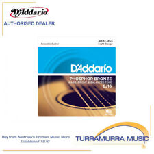D'Addario EJ16 Phosphor Bronze Light Acoustic Strings Single Set 12-53
