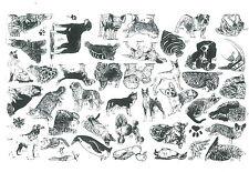 41+ Animal Dog Cat Pig Penguin bulldog unmounted rubber stamps sheet lot um 25