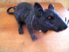 """Black Rat Fake Prop 7"""" Body 10"""" Tail Gag Prank NEW Ugly Joke Trick Hallpoween"""