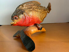 """Real Dried Piranha Fish Mount Taxidermy ~8"""" Length ~Complete Set Of Teeth"""