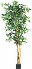Artificial Nearly Natural Ficus Silk Tree 6-Feet Green Indoor Decorative Leaves