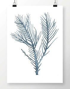 SEA FLORA II Botanical Sea Fern Watercolour Print- Coastal Plant Seaweed Hampton