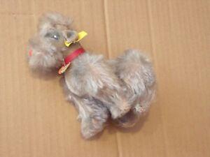 Steiff Hund Pudel Snobby grau, komplett mit KFS, 5314,05, Top Zustand, antik