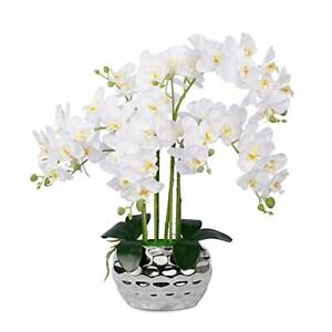 Artificial Orchid Plant Fake White Orchid Flower Real Touch Phalaenopsis Silk