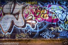 Prepasted wallpaper Mural photo Wall covering Decor graffiti 2.1x1.5m BZ280
