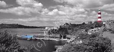 Plymouth Hoe Black & White Colour Splash Photo Canvas 10x22 inch panoramic (UK)