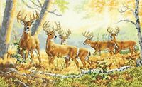 Dimensions 18 Count Gold Collection Summer's End Counted Cross Stitch Kit,16x10