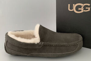 UGG ASCOT SUEDE Indoor/outdoor Slippers US12 $110 #1101110 NWT #29 Charcoal