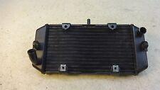 2006 Yamaha Majesty YP400 YP 400 Y534. radiator