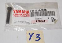 YAMAHA 1994 2009 GRIZZLY VIRAGO V-MAX KODIAK BLASTER PAN HEAD SCREW 98517-06030