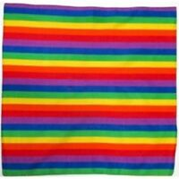 Rainbow Multi Color Bandana Bandana Headwear/Hair Band Scarf Neck Wrist HeadtiB2