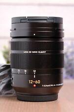 Panasonic Leica DG Vario-Elmarit 12-60mm f/2.8-4.0 ASPH Power OIS with Hood