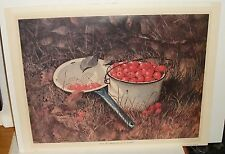 "RUDY NAPPI ""POT OF CHERRIES"" HAND SIGNED LITHOGRAPH"