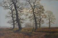 James Wright (British, b1935) Woodland Landscape with Elms Oil Painting c1970s