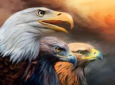 3D Lenticolare Immagine Ritratto di three eagles misura circa 39 x 29 cm