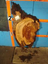 "#9263  1 1/4"" THICK  cherry burl live edge slab"