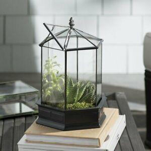 H Potter WAR151 Terrarium Barrel Roof Wardian Case Container Miniature Garden