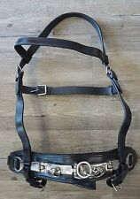 CLOSEOUT Training Lunge Cavesson Plain Black Leather 3 Ring Horse Size