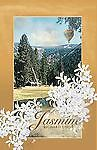 Jasmine by Richard Cook (2011, Paperback)