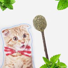 Gt- Ke_ Lollipop Catnip Ball Cat Toy Interactive Kitten Teeth Cleaning Snack Sti