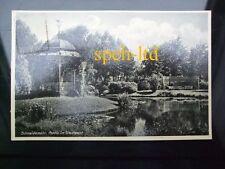 AK / Schneidemühl Pila  Partie im Stadtpark