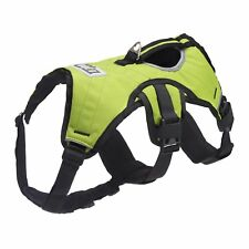 Explorer by FrontPet Dog Harness W/Dog Pulling Leash Included (Green) FRO-DH-3P