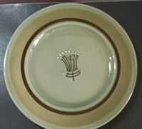 """Franciscan Emerald Isle 10 3/8"""" Dinner Plate hint of scratching"""